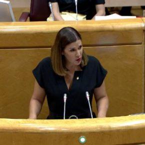 """Ruth Goñi: """"No quiero pensar que el PSOE esté dejando que el nacionalismo vasco le haga el trabajo sucio en Navarra"""""""